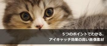i_2013_0125_2